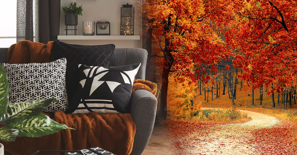 A stylish lounge sofa with scatter cushions and an autumnal throw, fading into a peaceful avenue pathway lined with golden autumn coloured trees.