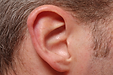 oreille.png