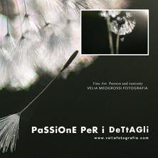 print_flowers_I.jpg