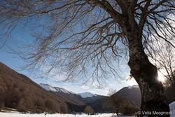 Seasons - IV - Winter