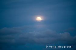 Silent moon - XVII