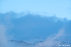 Winter - Sweet view - XVIII