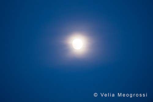 Silent moon - XVI