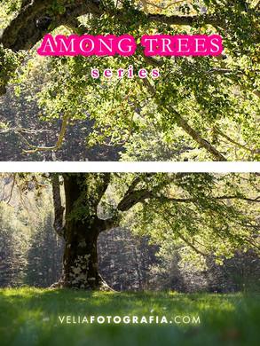 Among_trees_n_Spring_3.jpg