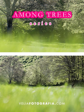 Among_trees_n_green_10.jpg