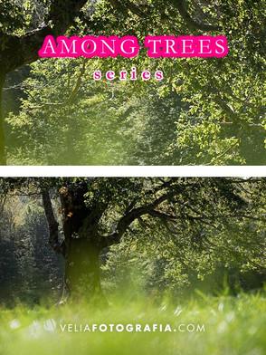 Among_trees_n_Spring_2.jpg