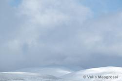 Winter - Sweet view - XIX