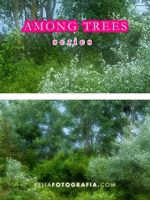 Among_trees_IX.jpg