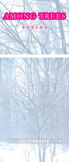 Among_trees_Winter_2.jpg