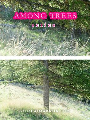 Among_trees_n_green_2.jpg