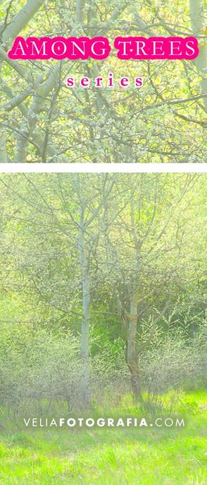 Among_trees_Spring_fresh_green.jpg