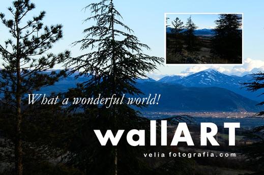 What_a_wonderful_world_VII_Details.jpg