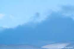 Winter - Sweet view - XVI