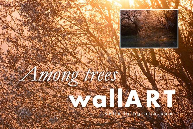 print_Among_trees_05.jpg