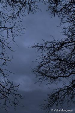 Winter - The sound of colours - IX