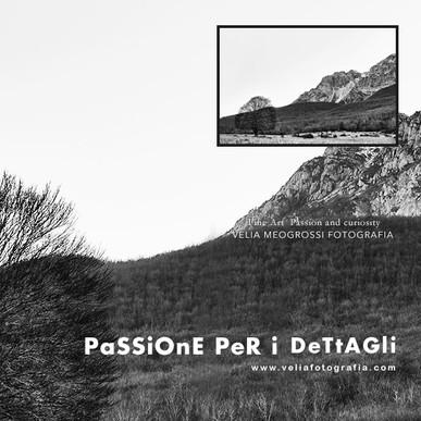print_landscape_bn.jpg