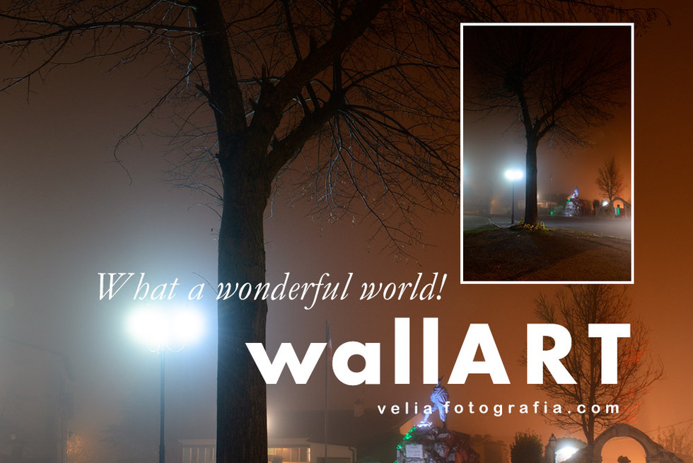 what_a_wonderful_world_print_foggy_novem