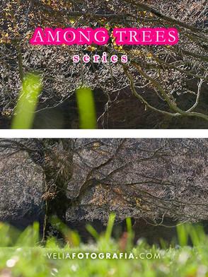 Among_trees_XVI_cop.jpg