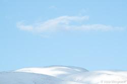 Winter - Sweet view - VI