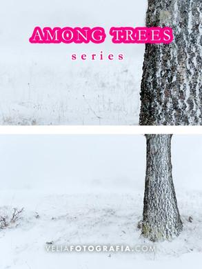 Among_trees_X_N_cop.jpg