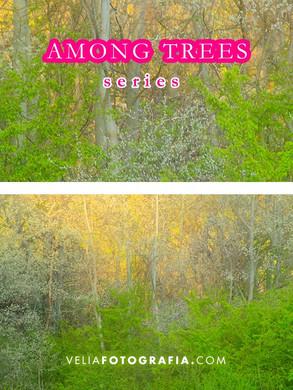 Among_trees_VII.jpg