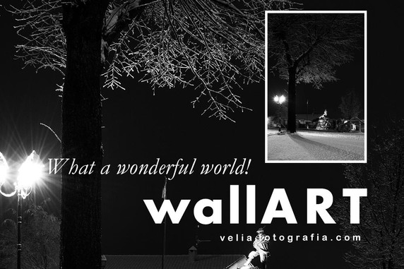 What_a_wonderful_world_VI_Details.jpg