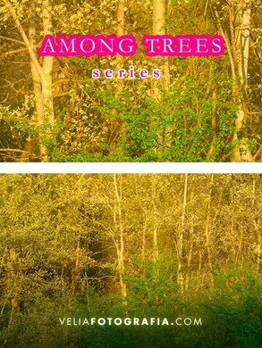 Among_trees_VIII.jpg