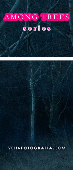 Among_trees_winter_1.jpg