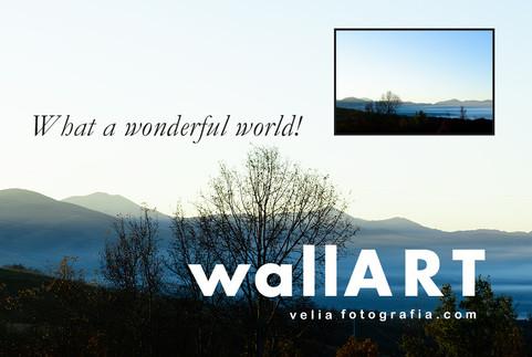 What_a_wonderful_world_V_Details_X.jpg