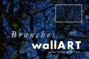 print_Branches_Autumn - VII.jpg