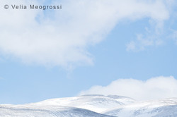 Winter - Sweet view - XXIX
