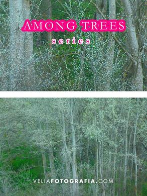 Among_trees_I.jpg