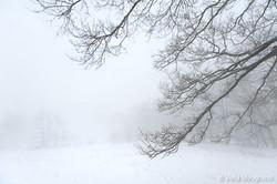 Silent winter - III