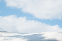 Winter - Sweet view - XI