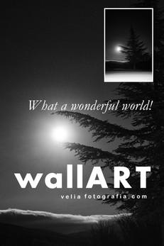 print_what_a_wonderful_world_night.jpg