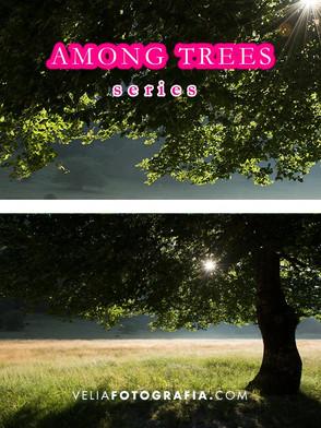 Among_trees_n_green_8.jpg