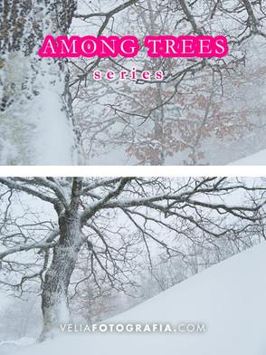 Among_trees_IX_cop.jpg