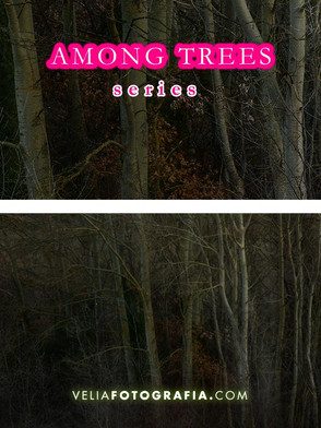 Among_trees_VI.jpg