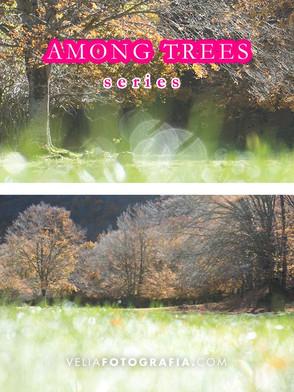 Among_trees_n_green_6.jpg