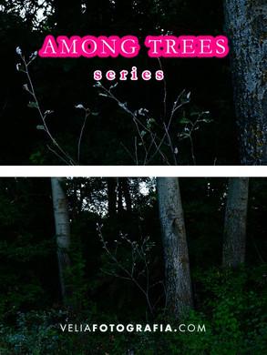 Among_trees_n_new_life.jpg