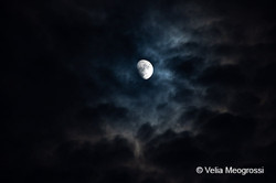 Silent moon - X