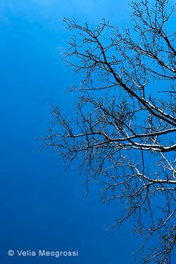Winter---The-sound-of-colours---XXXI