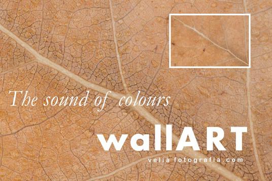 print_the_sound_of_colours_details_aut.j