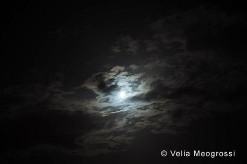 Silent moon - XIV
