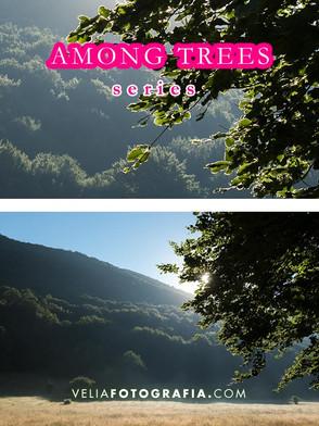 Among_trees_n_green_4.jpg