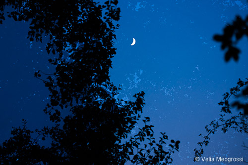 Silent moon - II