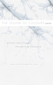 the_sound_of_colours_1.jpg