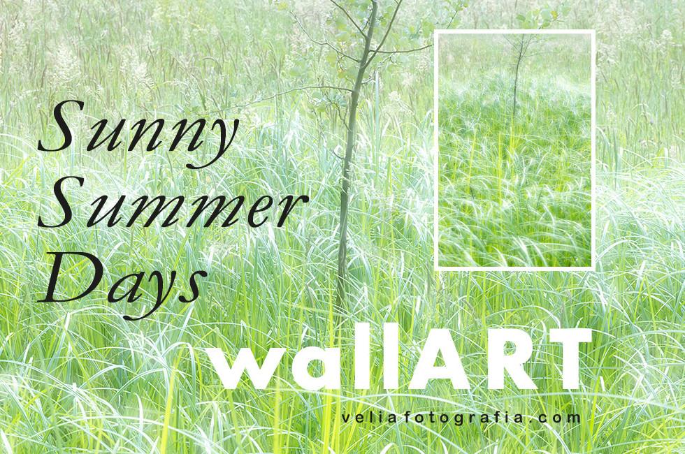 velia_fotografia_wall_art_sunny_days_ser