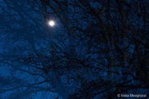 Silent moon - IV