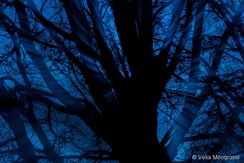 The beauty of night - II